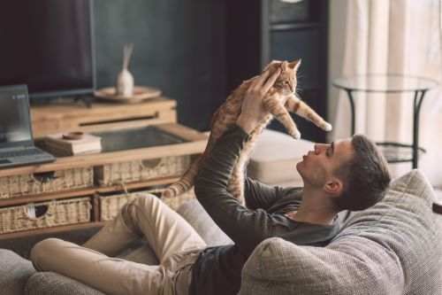 person inside cozy house with cat