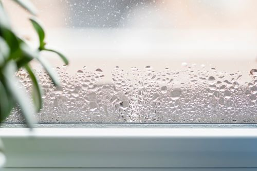 entek-why-its-important-to-manage-the-humidity-in-your-house